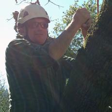 Jason Lindsey, The Treehouse Guys DIY network