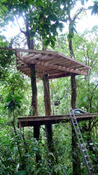 Finca Bella Vista treehouse by The Treehouse Guys, LLC