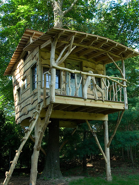 Colins Place The Treehouse Guys Llc