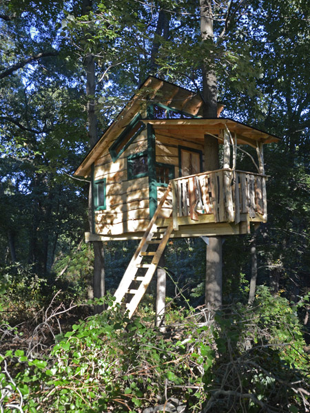 backyard treehouse by The Treehouse Guys, LLC