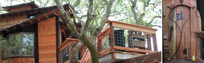 DIY Network The Treehouse Guys TV show building tree houses