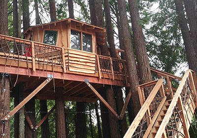 backyard treehouse Gays Fairy Ft. Bragg, CA the Treehouse Guys