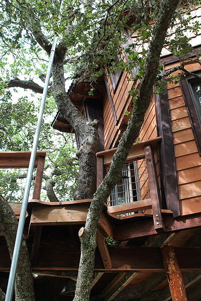 The Harding's Tree House by the Tree House Guys, DIY network
