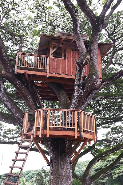 Hawaii Oahu Tree house by the Tree House Guys, DIY network