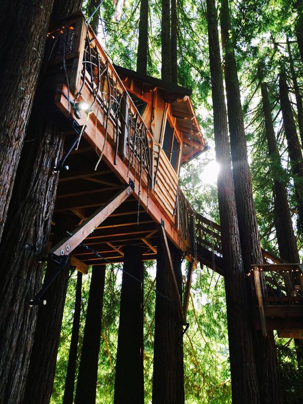 backyard treehouse Gays Fairy Ft. Bragg, CA the Treehouse Guys, DIY Network