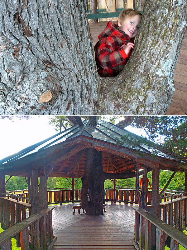Oakledge Park Burlington Vermont, Accessible Tree House by The Treehouse Guys, LLC, Vermont